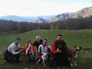Amarok in montagna Alpe di Lierna